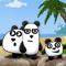3 панды
