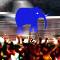 Беги слон, беги